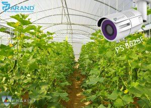 دوربین مداربسته برای گلخانه ها